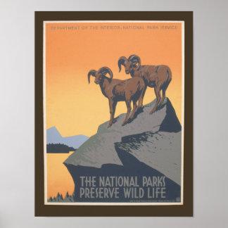 National Park - Preserve Wildlife - Vintage Poster