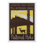 National Parks Deer and Antelope Poster