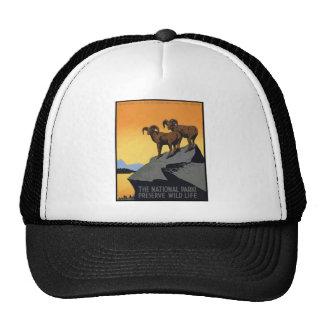 National Parks Preserve Wild Life Mesh Hat