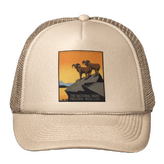 National Parks Preserve Wild Life Mesh Hats