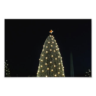 National Tree and Washington Monument at Night DC Photograph
