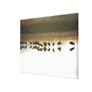 National Wildlife Refuge Dawn Wrapped Canvas Stretched Canvas Prints