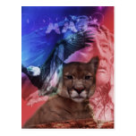 Native American Indian Warrior Postcards