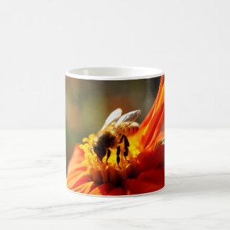Native Bee in an Orange Flower Mug