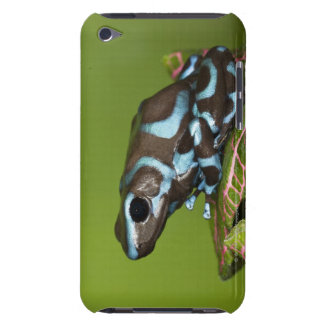 Native to Panama iPod Touch Covers