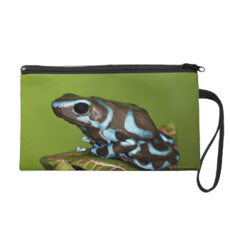Native to Panama Wristlet