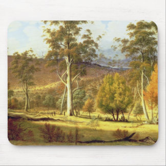 Natives in the Eucalypt Forest on Mills Plains, Pa Mouse Mat