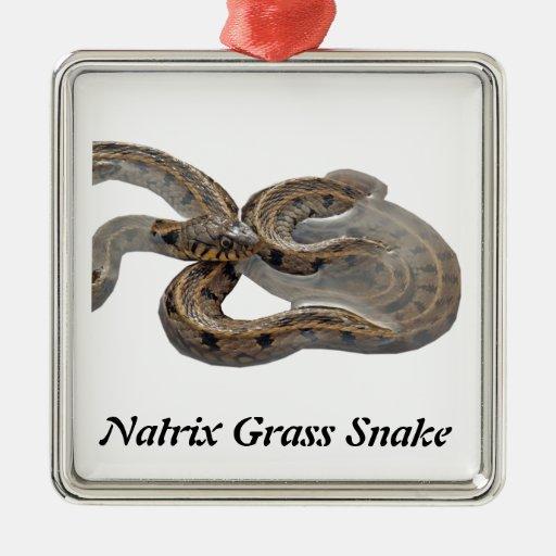 Natrix Grass Snake Christmas Tree Ornament