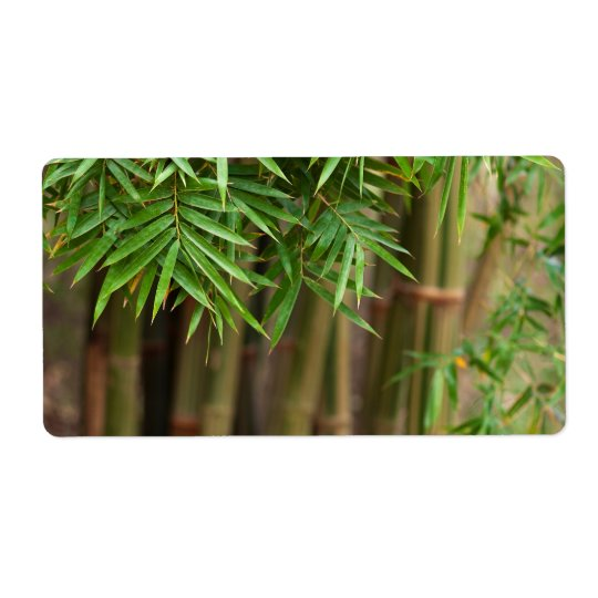 Natural Bamboo Zen Background Customised Template