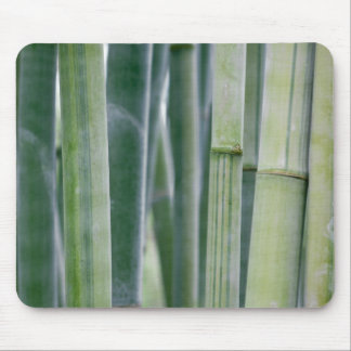 Natural Bamboo Zen Background Customized Template Mouse Mat