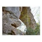 Natural Bridge Kentucky Postcard