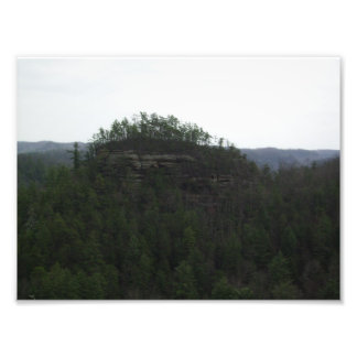 Natural Bridge State Park Photo Print