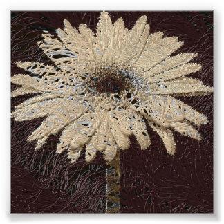 Natural, brown tones Daisy Print wallhanging