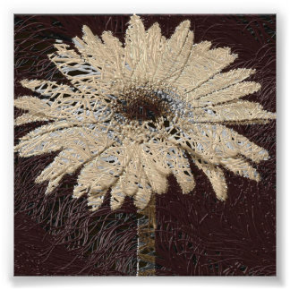 Natural, brown tones Daisy Print wallhanging Photograph