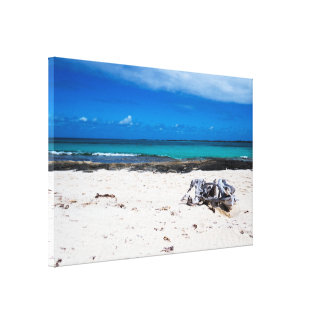 Natural Exotic Beach&Ocean Canvas Print