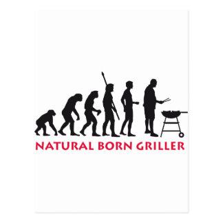 Natural fount Griller 2C Postcard