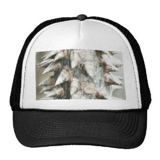 Natural Trucker Hats
