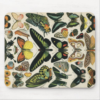 Natural History Butterfly Mouse Mat