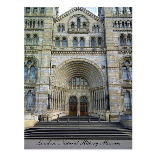 Natural History Museum, London Postcard