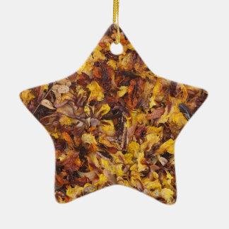 Natural leaf litter star decoration
