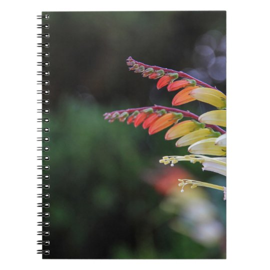 Natural Notebook