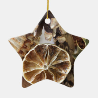 natural objects christmas ornament