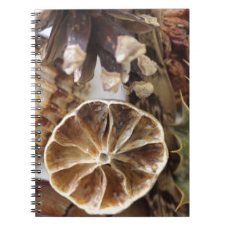 natural objects notebooks