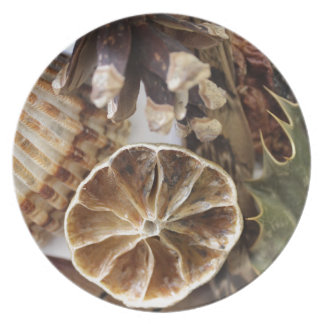 natural objects plate