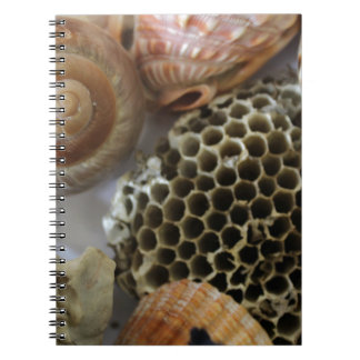 natural objects spiral notebook