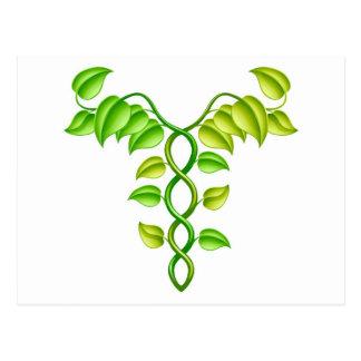 Natural or alternative medicine concept postcard