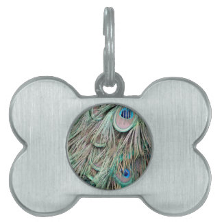 Natural Peacock Eyes Fluffy Feathers Pet Tag