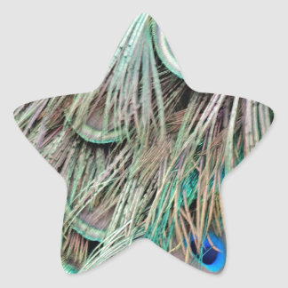 Natural Peacock Eyes Fluffy Feathers Star Sticker