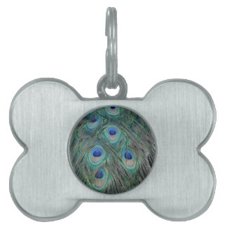 Natural Peacock Feather Eyes Colorful Pet Tag