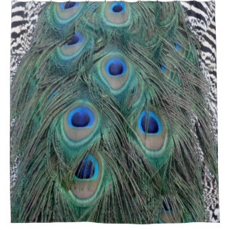 Natural Peacock Feather Eyes Colorful Shower Curtain