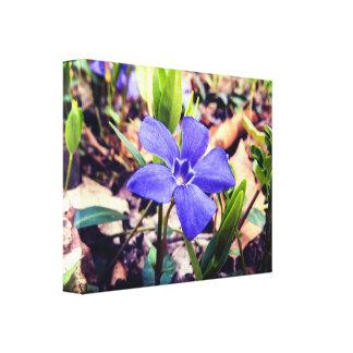 Natural Purple Flower Canvas Print