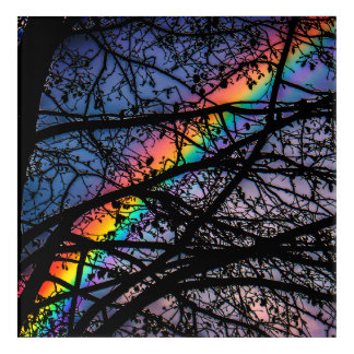 Natural Rainbow Acrylic Print