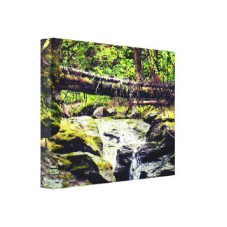Natural River Canvas Print