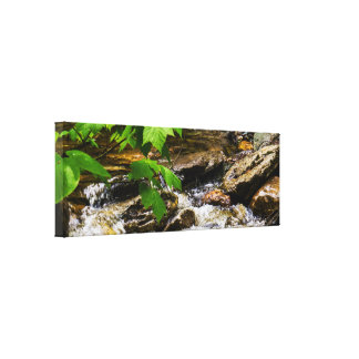 Natural River Panoramic Canvas Print