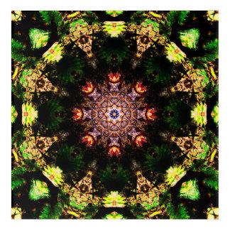 Natural Shapes Mandala Acrylic Print