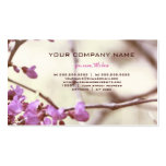 Natural Web Pack Of Standard Business Cards