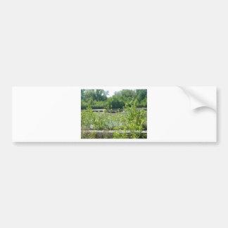 Natural Wetlands Photograph Bumper Sticker