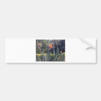 Natural wonders Hawaiian style Bumper Sticker
