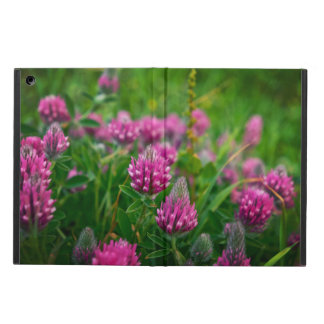 Nature 2 iPad air case