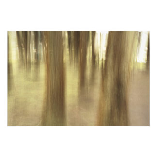 Nature abstract photo print