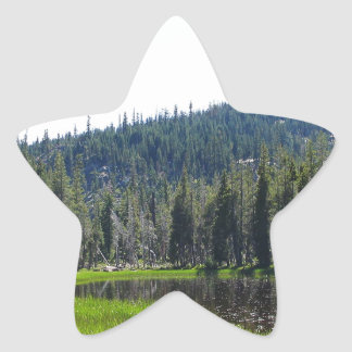 Nature and Beauty Star Stickers