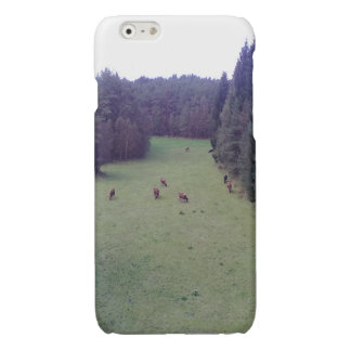 Nature and Cow iPhone 6 Plus Case