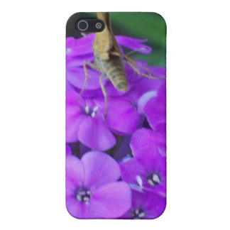 Nature At Work iPhone 5/5S Case