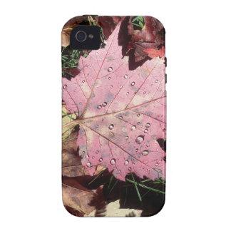Nature Autumn Leaf Raindrops iPhone 4 Cover