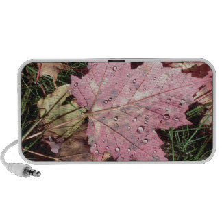 Nature Autumn Leaf Raindrops Mini Speaker