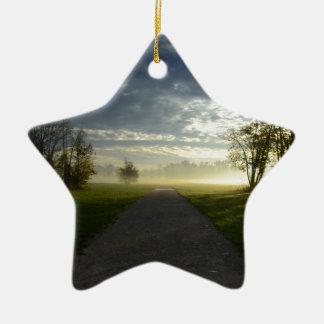 Nature Ceramic Star Decoration